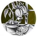 Covermotiv - Francesco Passantino - Tuscaniland EP