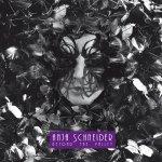 Covermotiv - Anja Schneider - Beyond The Valley