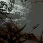 Covermotiv - Fractional - Come Mierda