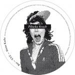 Covermotiv - Various - Pilocka Krach & Friends