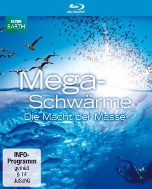 Titelmotiv - Megaschwärme - Die Macht der Masse