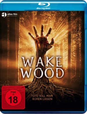 Titelmotiv - Wake Wood