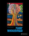 Covermotiv - Planet Hundertwasser