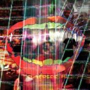 Covermotiv - Animal Collective - Centipede Hz