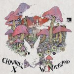 Covermotiv - Channel X - Wonderland