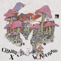 Covermotiv - Wonderland