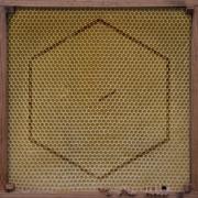 Covermotiv - Rangleklods - Beekeeper
