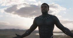 T'Challa aka Black Panther (Chadwick Boseman) - Black Panther