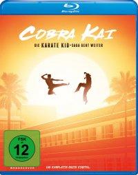 Cobra Kai - Die Serie, Titelmotiv